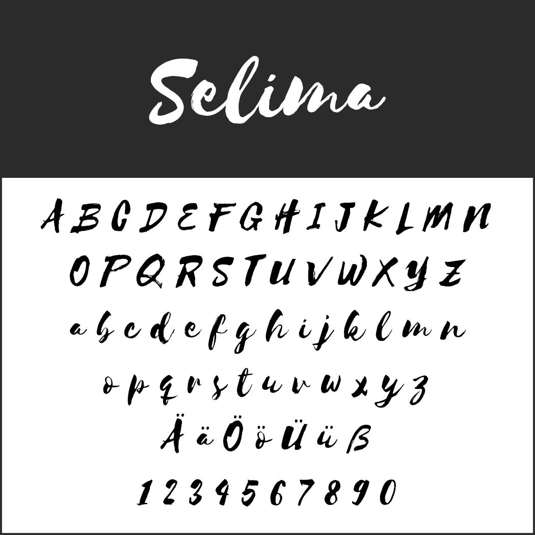Brush Fonts - Free Font Selima