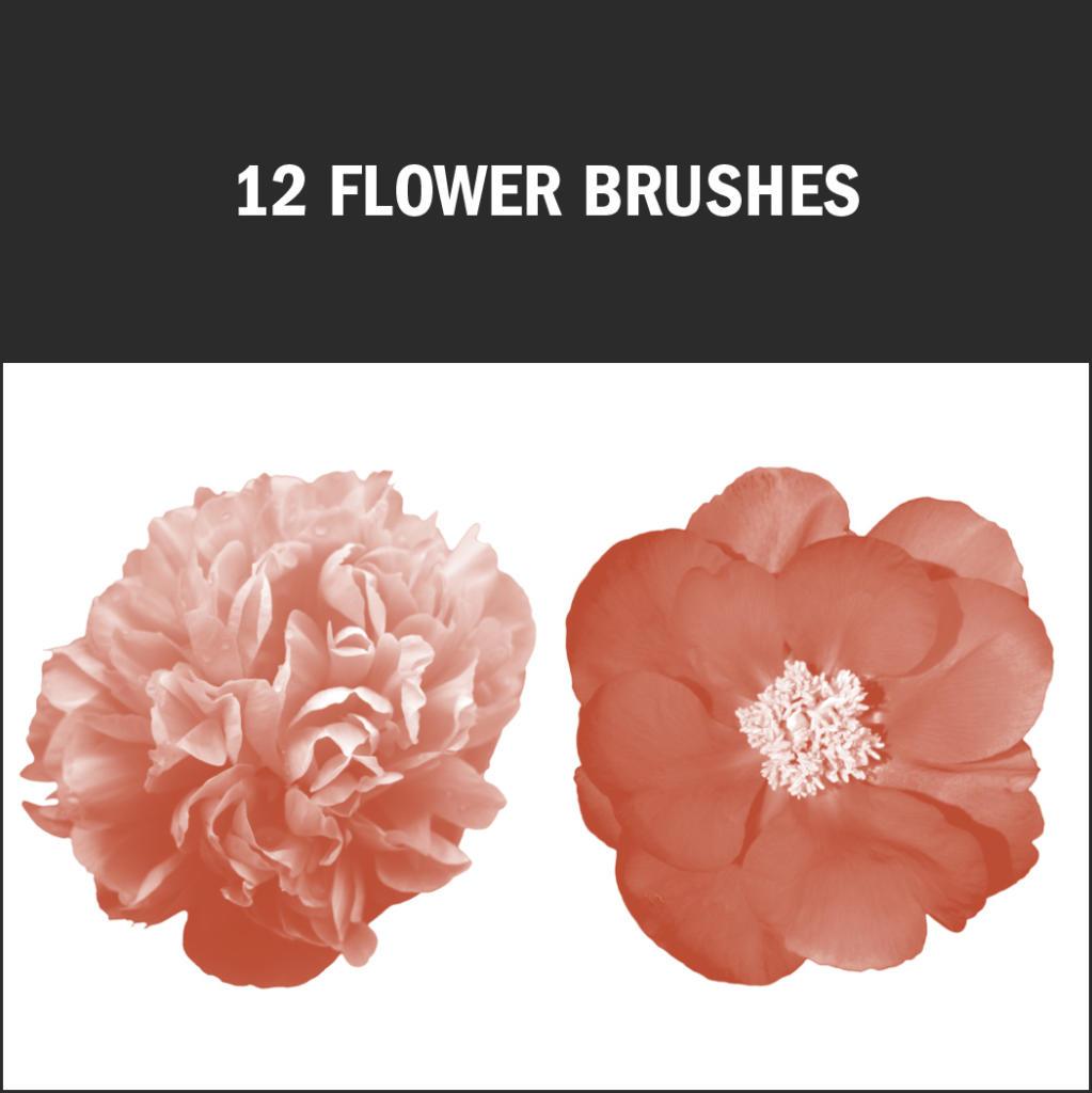 Diese kostenlosen Pinseltrumpfen mit filigranen Blütendetails auf.