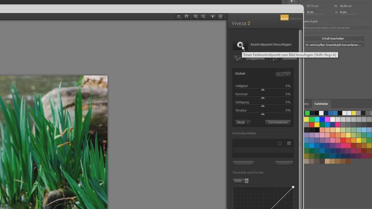 Photoshop-Tutorial: Google Nik Collection - Viveza