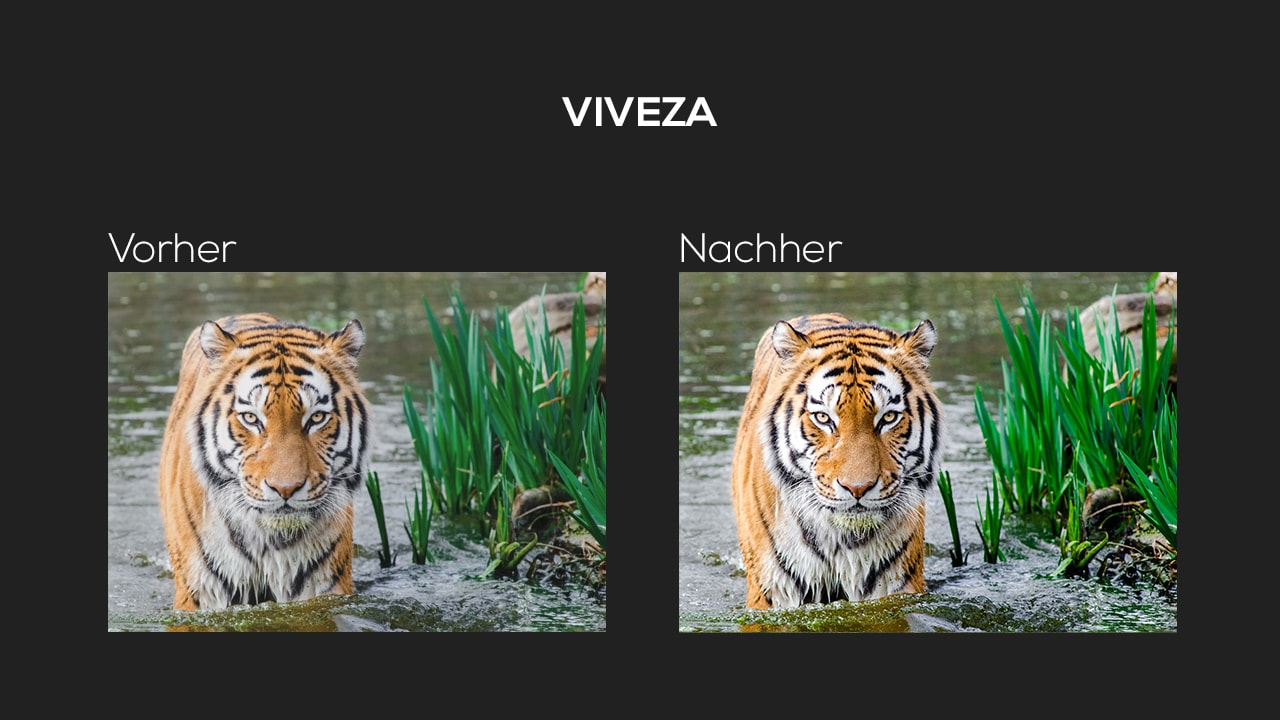 Photoshop-Tutorial: Google Nik Collection - Viveza