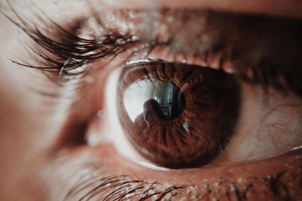 Makroaufnahme Auge