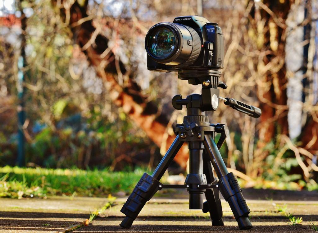 Basisausrüstung Makrofotografie