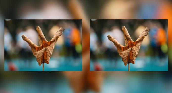Photoshop Bilder verkleinern