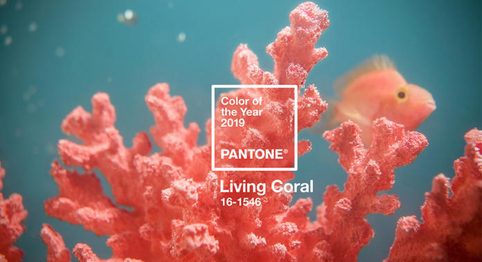 pantone farbe des jahres 2019 living coral. Black Bedroom Furniture Sets. Home Design Ideas
