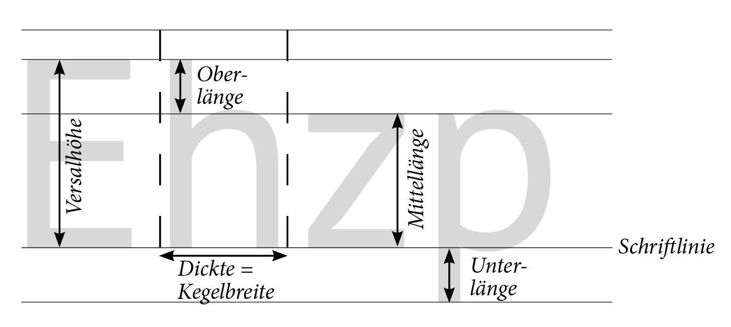 Die Schriftgröße_Anatomie