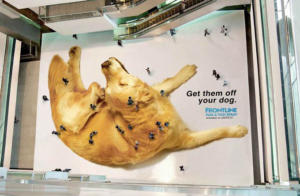 Beispiel für kreative Werbeideen