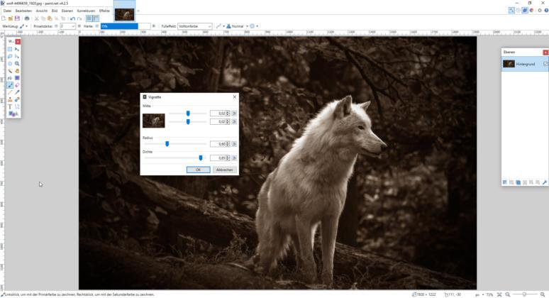 Photoshop-Alternativen_Paintnet_Sepia_Vignette