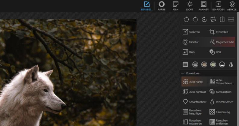 Photoshop_Alternativen_PhotoScapeX_Ausschnitt_Korrekturen
