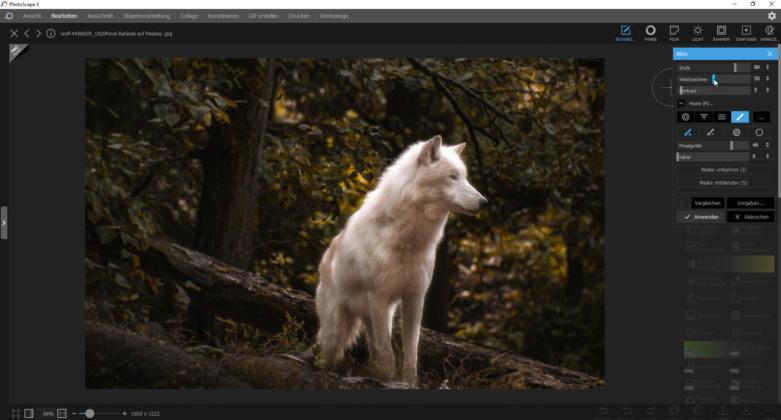 Photoshop_Alternativen_PhotoScapeX_Bluete