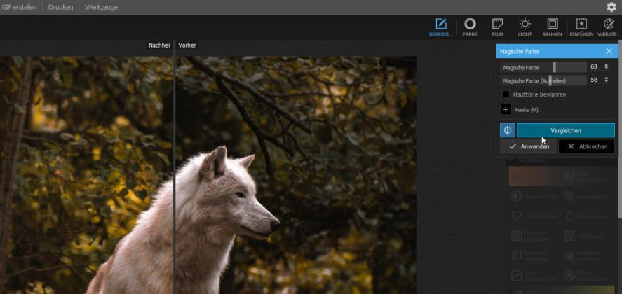 Photoshop_Alternativen_PhotoScapeX_Magische_Farben_Vorher_Nachher