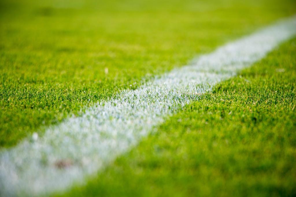 Fußballfeld Rasen