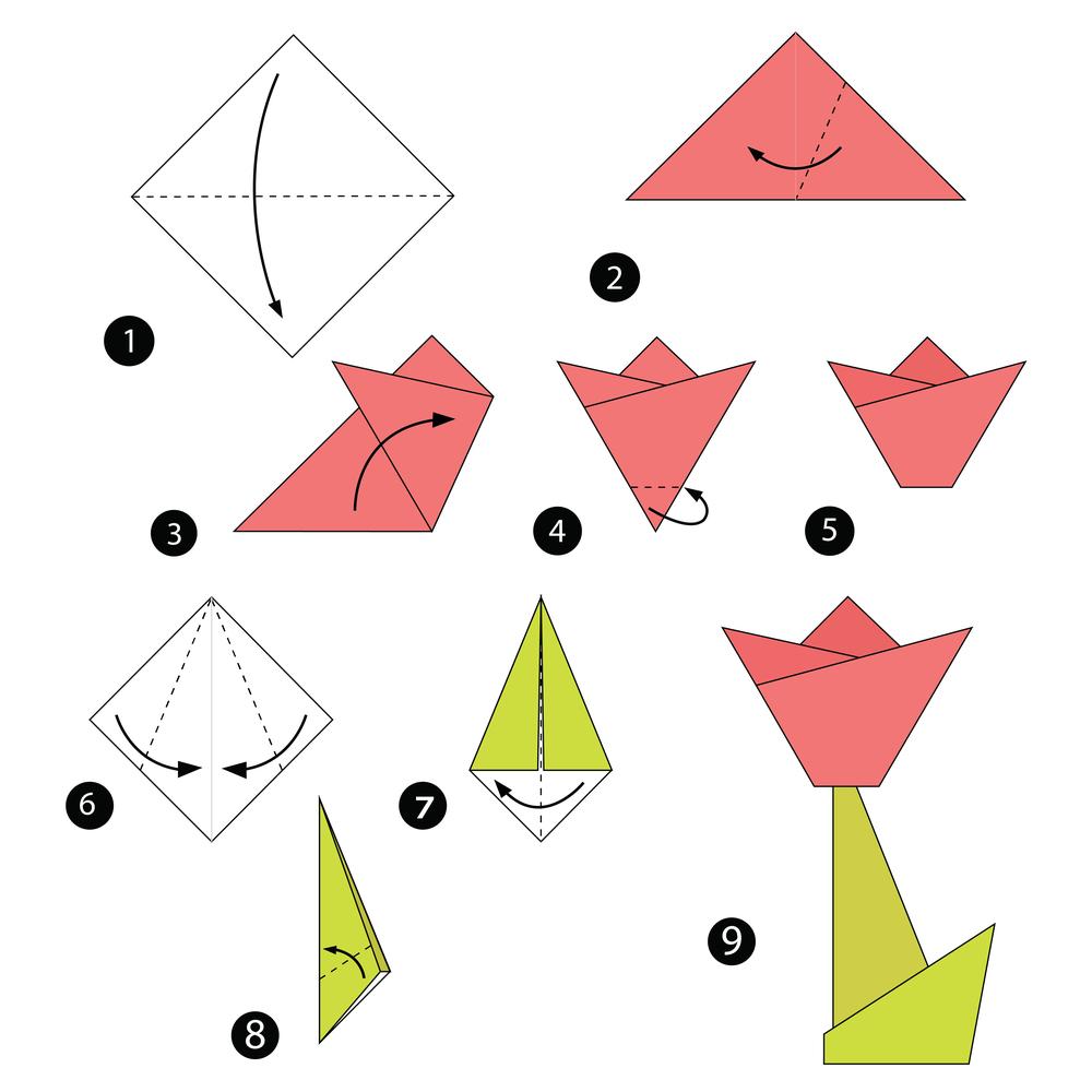 Origami Faltanleitung für eine zweidimensionale Tulpe