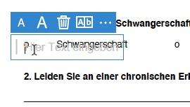 PDF ausfüllen - Variante A