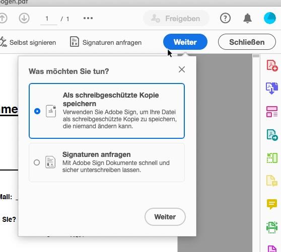 PDF ausfüllen -